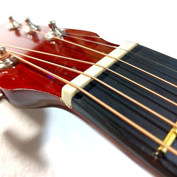 Amazon アコースティックギター 初心者セット ナット2