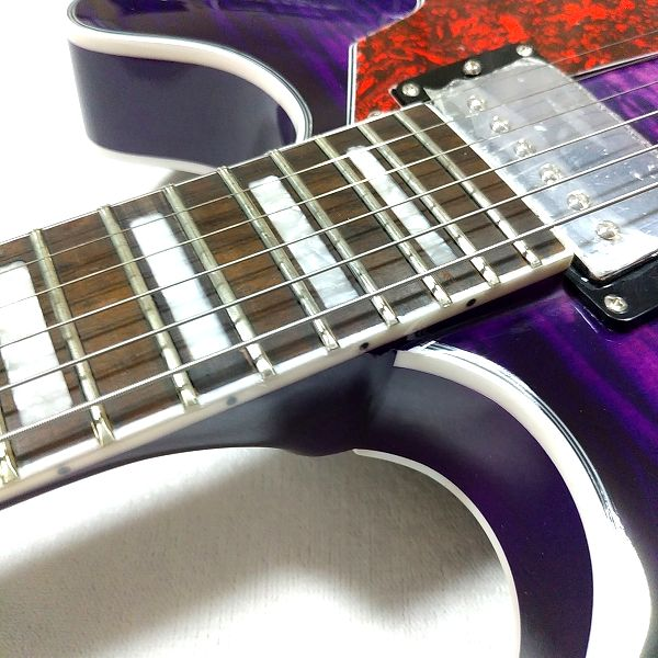 GROTE 335 style with Bigsby フレット