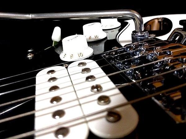 Fender Player Stratocaster Floyd Rose HSS アーム�ノブ